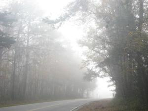 early morning riding 40 miles west of Charleston. It felt like riding into heaven or something with the sun lighting up this white corridor of mist, it was surreal. If only it had been warmer!