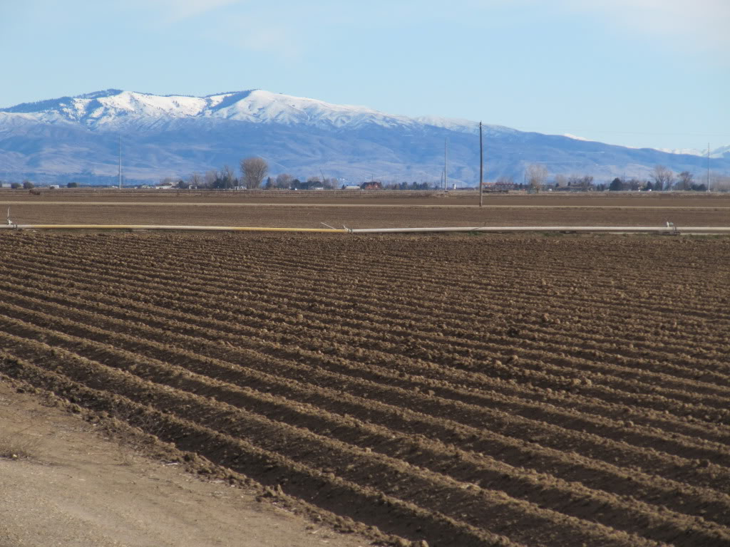 Boise is surrounded by farms and ranches; backed by mountains.
